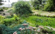 Волгоградский Ботанический Сад